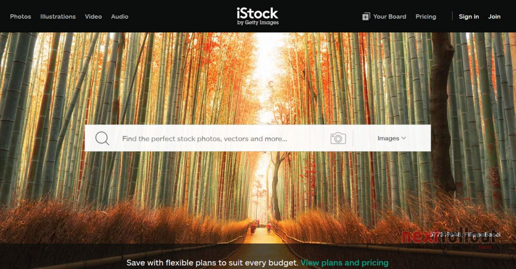 Make Money From Photography with Istock